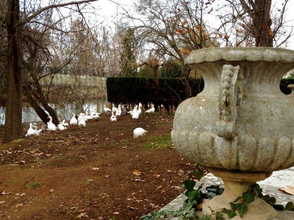 Real Sitio de Aranjuez