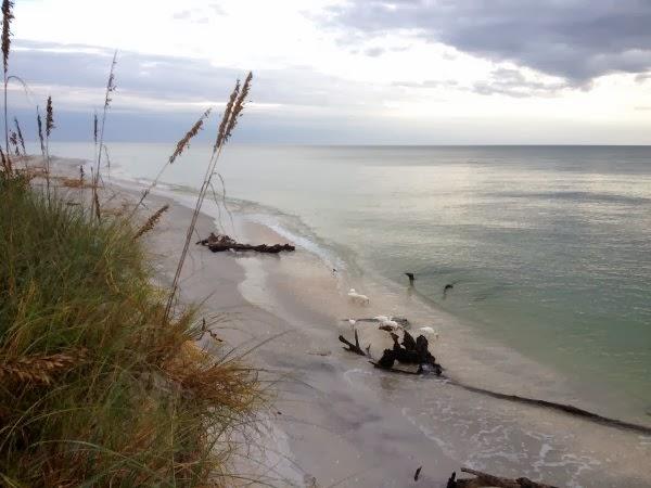 Playa de Bowman