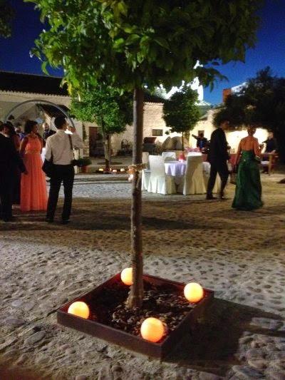 celebración de la boda