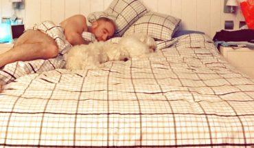 Beneficios de dormir con perros