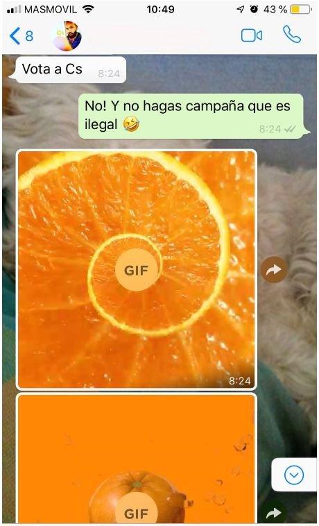 Conversación por WhatsApp sobre el voto a Ciudadanos